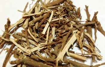 3.Một số bài thuốc chữa bệnh từ cây sài hồ nam 1