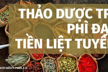thao-duoc-chu-phi-dai